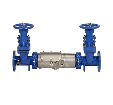 Barracuda 20 Double Check Valve Backflow Preventer