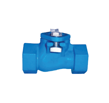 BCV-IPS Thread End Ball Check Valve